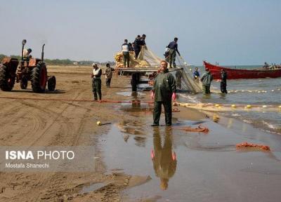 صید صنعتی تاثیر منفی بر صیادان محلی ندارد