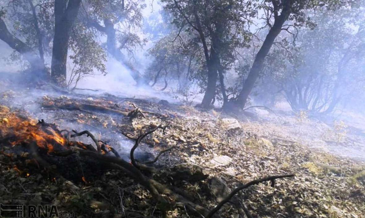 خبرنگاران آتش دوباره به جان جنگل های شمال دزفول افتاد