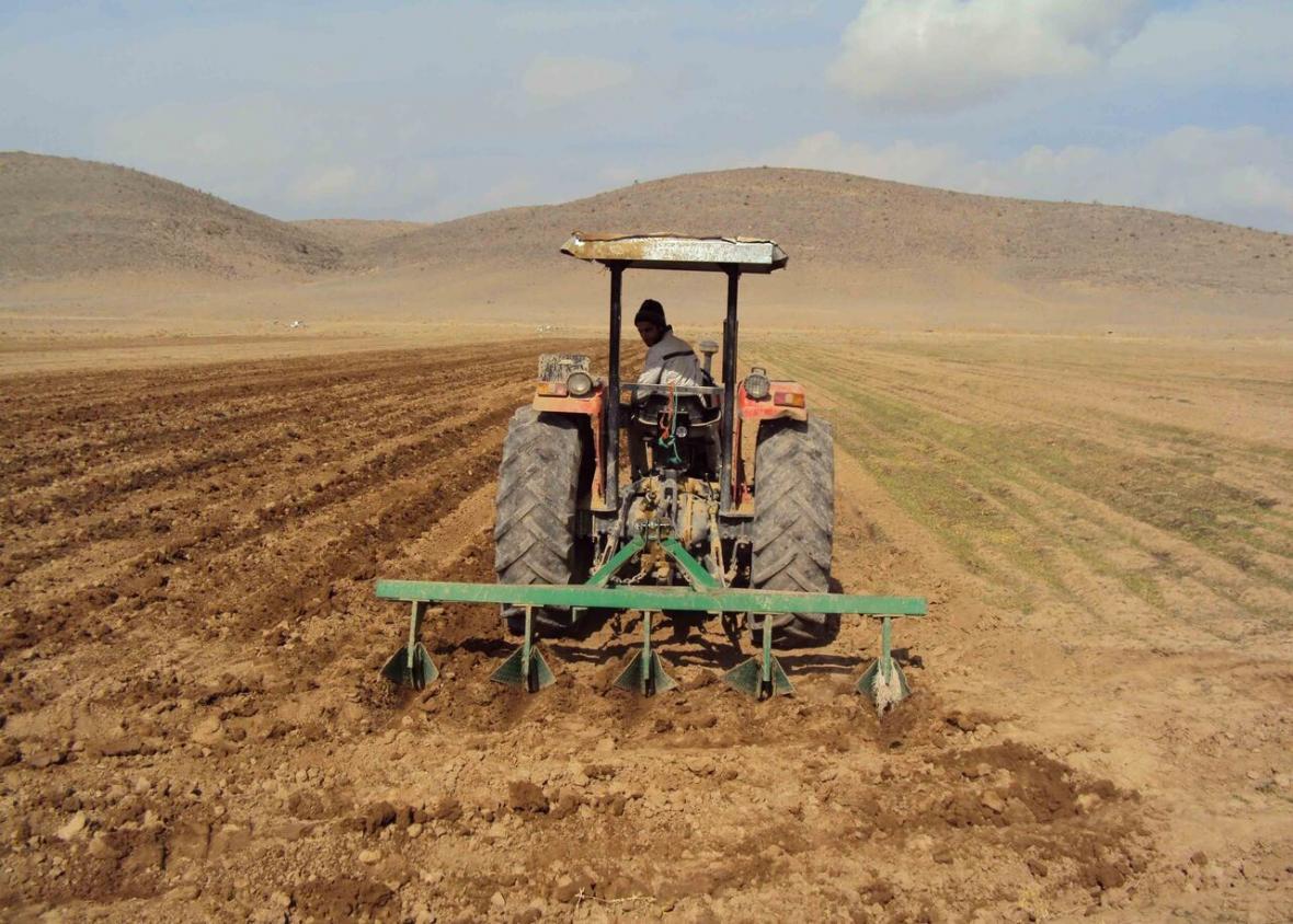 خبرنگاران کشاورزان خراسان شمالی تناوب کشت را رعایت کنند