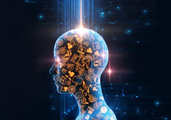 آموزش هوش مصنوعی با دادههای اندک